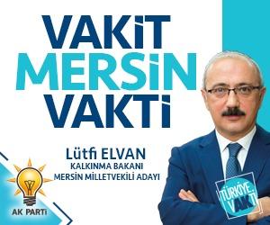 Lütfi Elvan