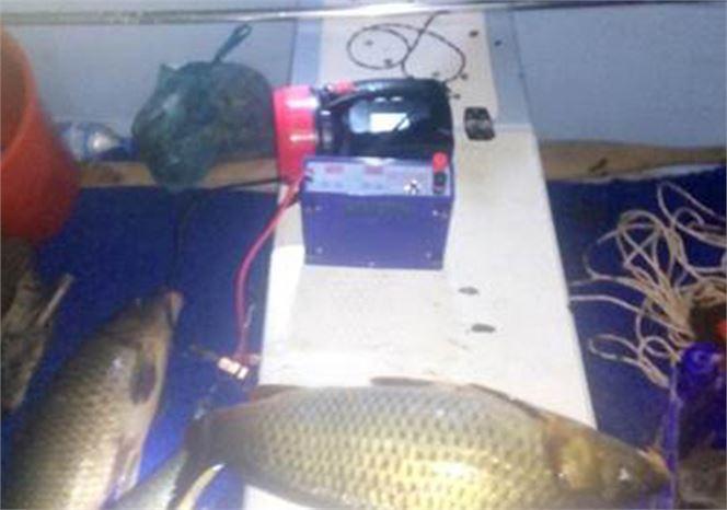 Elektrikle Balık Avlayanlara Suçüstü