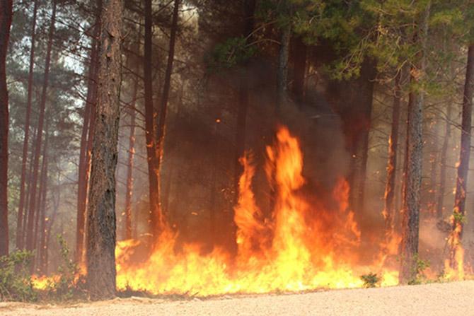 Karabucak'ta Yangın