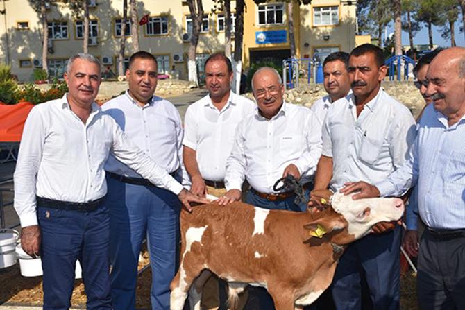 Tarsus'ta 'Buzağı Barınağı' Dağıtım Töreni Yapıldı