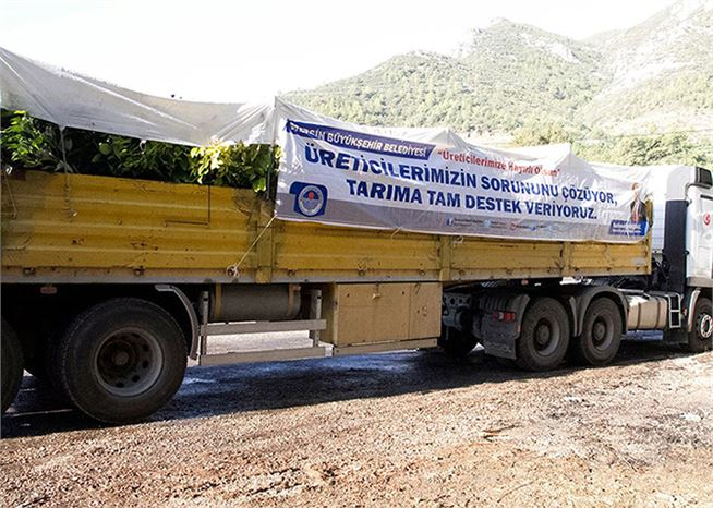 Mersin Büyükşehir Belediyesi Tarıma Destek Olmaya Devam Ediyor