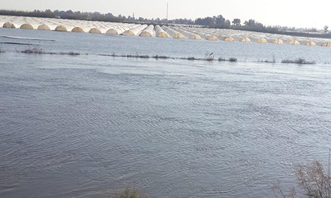 Seyhan Nehri Taştı