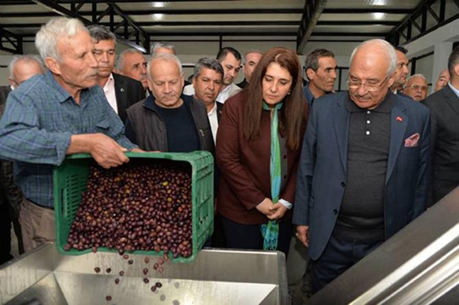 Tarsus Dedeler Mahallesi Zeytin-Yaprak Salamura Tesisi'nin Açılışı Gerçekleştirildi