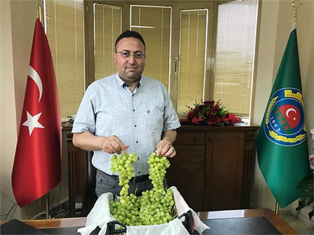 Başkan Veyis Avcı, Erken Üzüm Hasadı Yapılmamasını İstedi