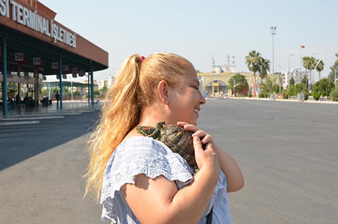 Kayıp Kaplumbağa Tonti'yi Büyükşehir Sahibine Kavuşturdu