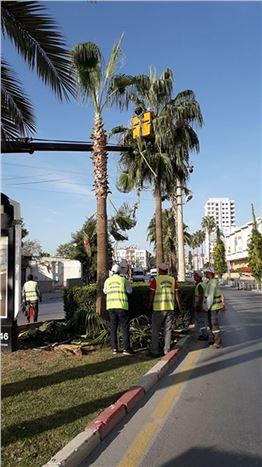 Tarsus'ta Kış Öncesi Bakım Çalışmaları Yapılıyor