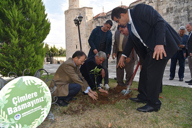 Ulu Cami ve Müftülük Bahçesi Ağaçlandırıldı