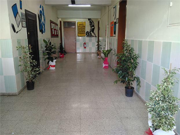 Gazetemize Gelen Çiçekler, Bir Okulun Koridorlarını Süsledi