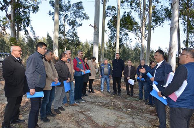 Orman Bölge Müdürü Akduman, Okaliptüs Sahalarını İnceledi