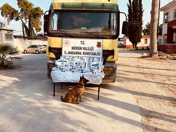 Jandarma 2 Bin Paket  Kaçak Sigara Ele Geçirdi