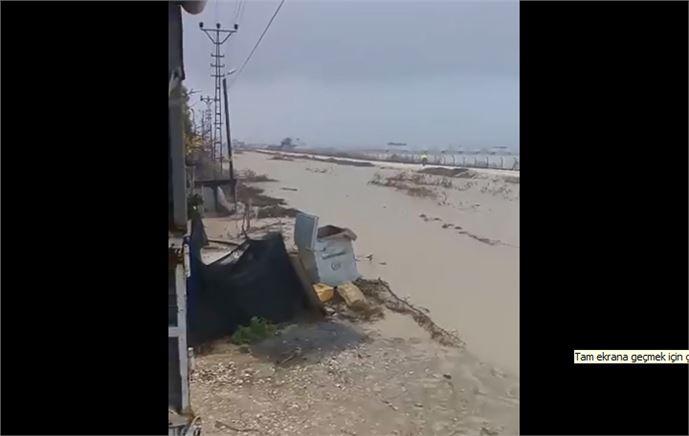 Adanalıoğlu'nda Çiftçiler Sel Mağduru Oldu