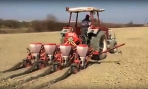 Tarsus'ta Çiftçiler Mısır Ekimine Başladı